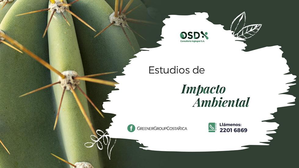 estudios impacto ambiental
