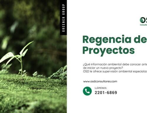 Regencia de Proyectos: Supervisión Ambiental Especializada