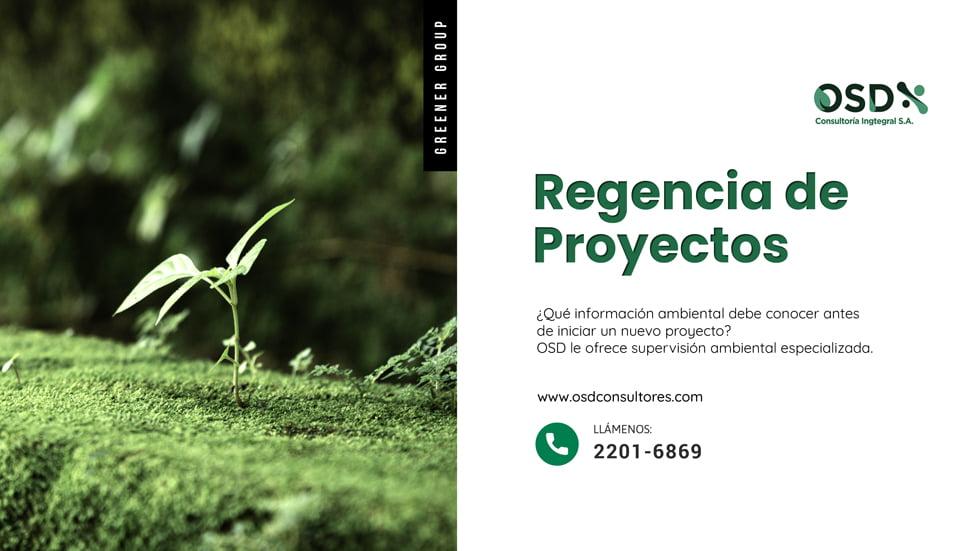 regencia de proyectos