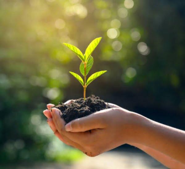 plan gestion ambiental