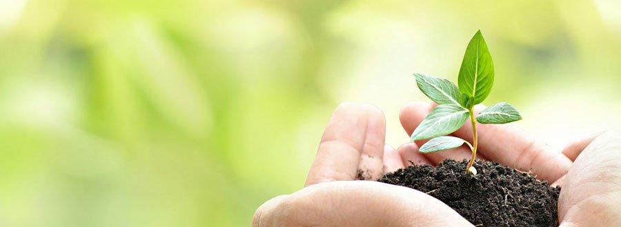 disminucion impacto ambiental osd