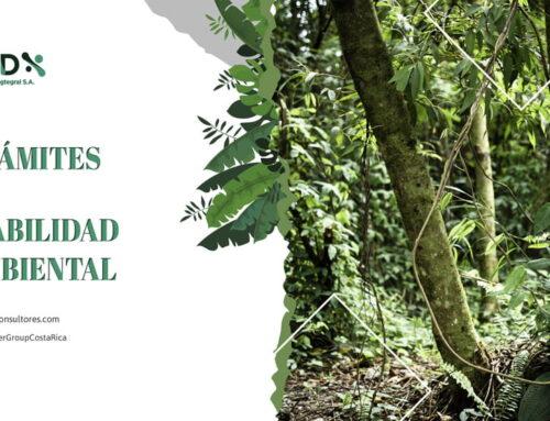 Trámites de Viabilidad Ambiental | OSD Consultores