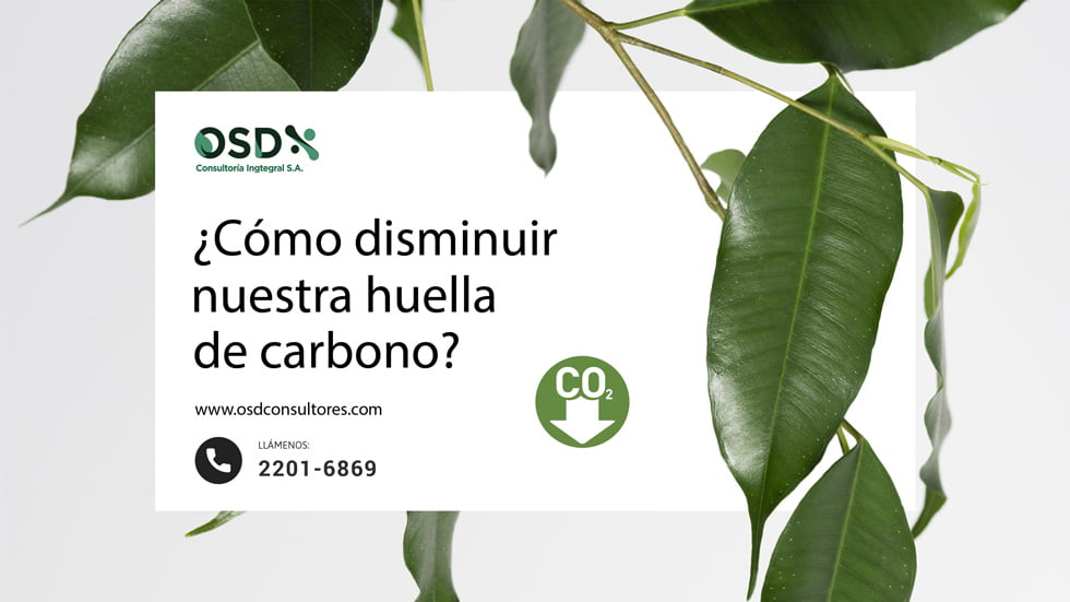 disminuir huella carbono