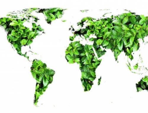 Evaluaciones de Riesgos Ambientales